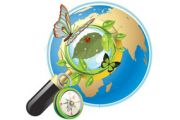 """Дополнительная образовательная программа по экологии """"Мир цветов"""""""