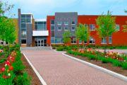 Озеленение территории школы
